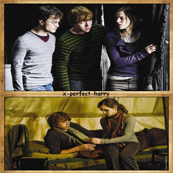 Nouvelle photo du trio ♥ et Autres ....
