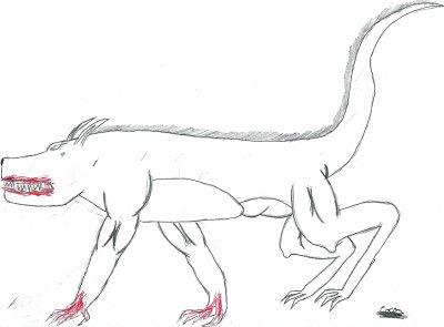 loup-garou de coco(1)