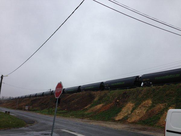 Train céréaliers le 28.03.15