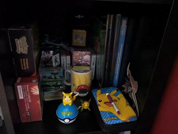 l'espace pokemon de ma tanière