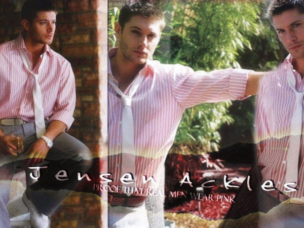 Jensen Alckes
