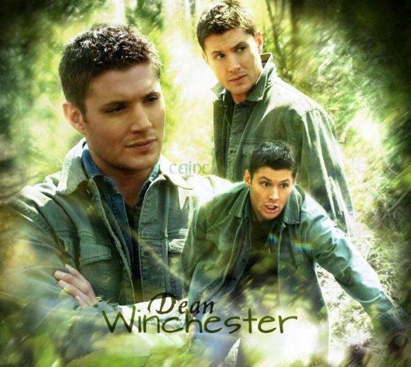 je viens juste de trouver ce superbe montage de Dean j'adore