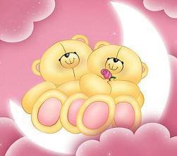 deux petit ours en peluche