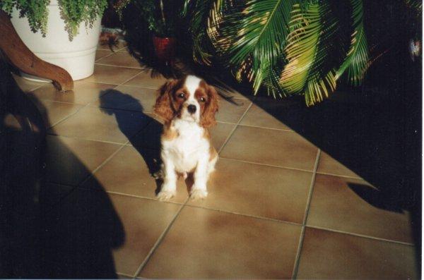 Le premier novembre 2005