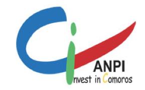 ANPI(Agence National pour l'Investissement): Fermeture de son site web pour non paiement de l'abonnement