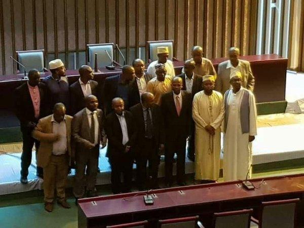 Palais de Hamramba : Loi de l'habilitation, Nkalisi ou démocratie!