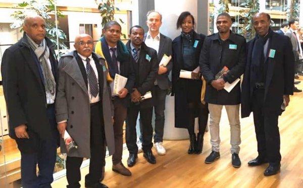 Dernière minute La diaspora a-t-elle perdu toute crédibilité : Six cents euros pour passer à la télévision sur Africa24