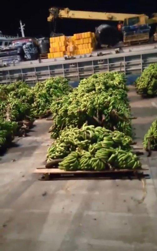 Mois de ramadan : Dieu envoie un don alimentaire de bananes aux  Comores