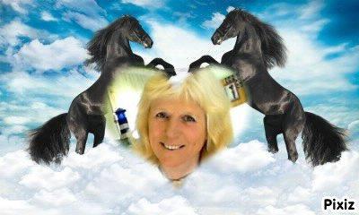 un petit montage de moi avec des chevaux car j'ai toujour adorée ça