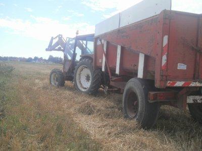 moisson de blé  2011