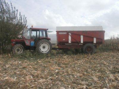 moisson de maïs 2011