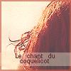 Photo de LeChantduCoquelicot