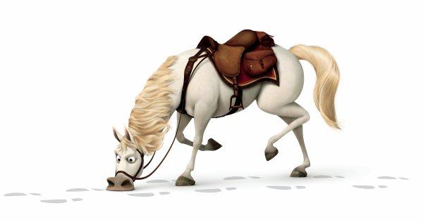 Maximus le cheval