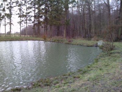 l'étang aprés le degel  en se debut d'année 2011