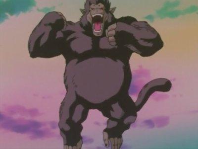 Végéta gorille géant