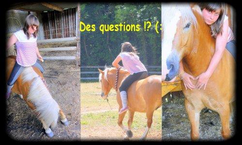 Des questions ?! (: