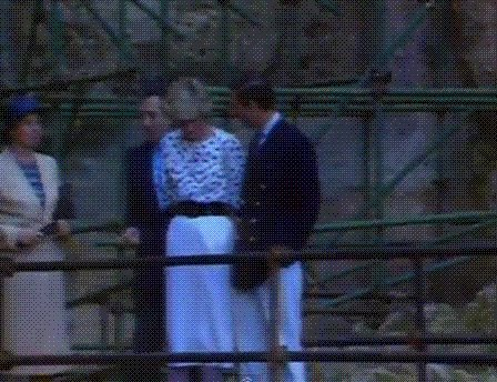 Diana & Charles - The Italian Tour _ Suite -  Le 04 Mai 1985