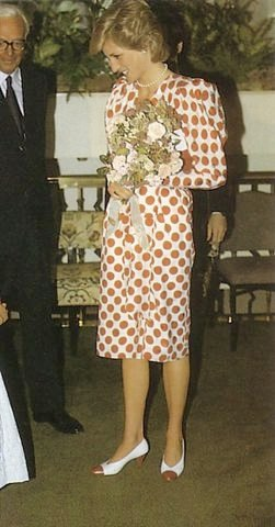 """Princess Of Wales - 7 September 1986 Diana """"  Save The Baby Luncheon """""""