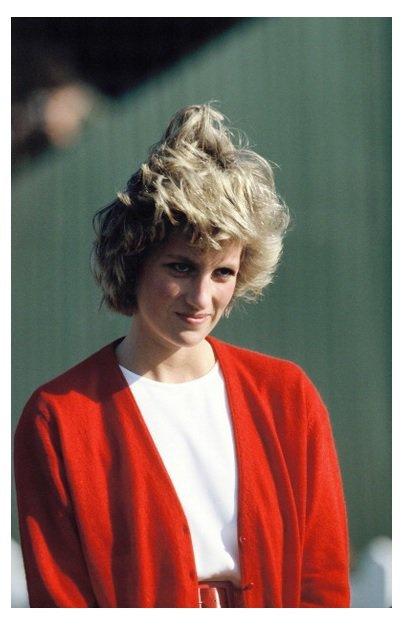 Diana au polo ,le 29 mai 1985 _ Suite