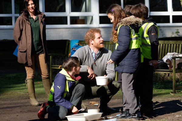 Prince Harry -  the QCC Project , le 15 mars 2017