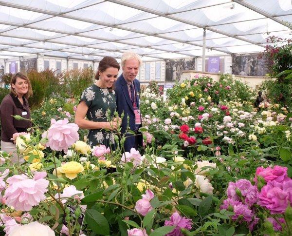 Duchess Catherine - Chelsea Flower Show  , le 22 Mai 2017