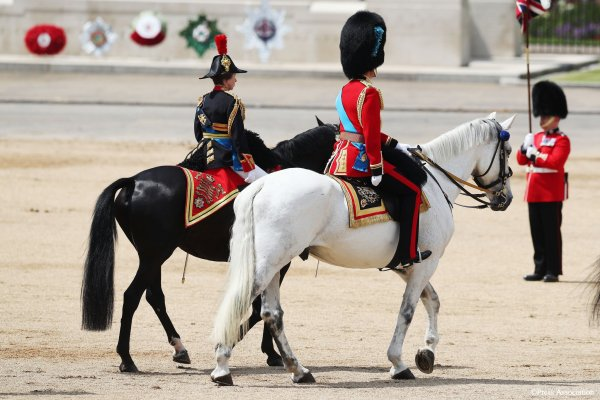 Trooping the Colour, le 17 Juin 2017 _ Suite