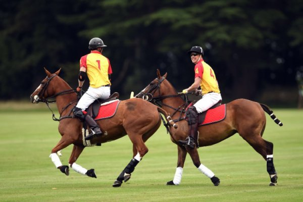 William et Harry - the Jerudong Park Trophy 2017