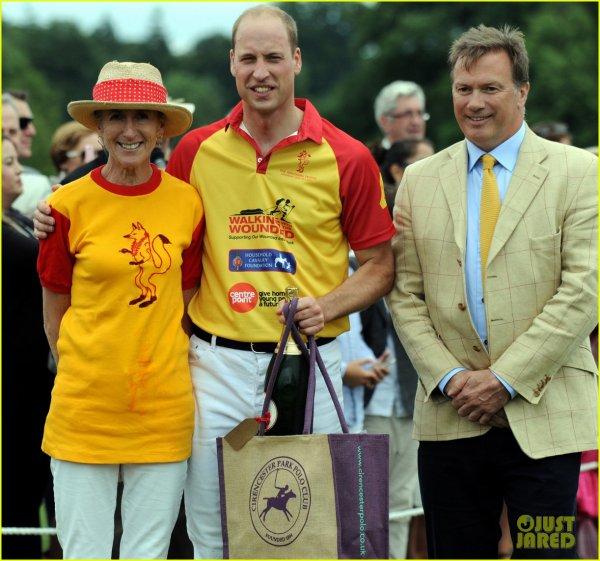 William et Harry - the Jerudong Park Trophy 2017 _ Suite