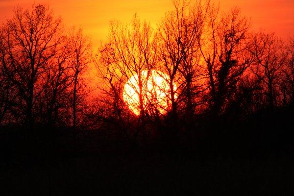 """Résultat de recherche d'images pour """"coucher de soleil en campagne"""""""