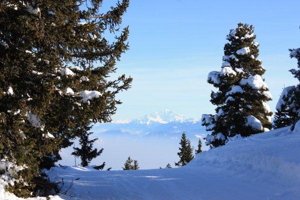 Massif Central, Ardèche puis descente