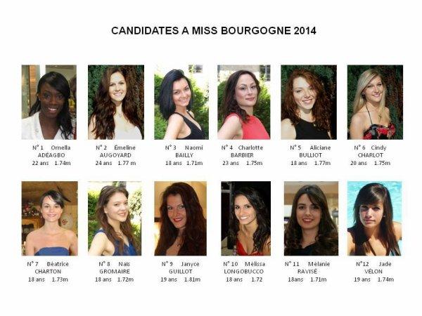 Les candidates à Miss Bourgogne 2014