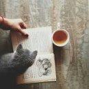 Photo de passionne-de-livres