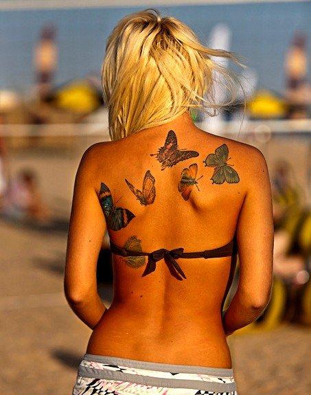 ~ Série Papillons