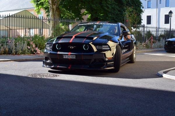 sortie Mustang