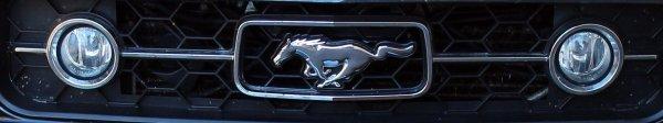 sortie Mustang 2