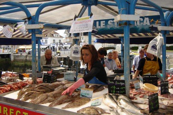 Courseulles sur mer - Calvados.