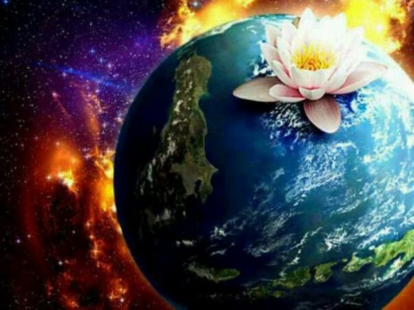 trouver sa joie dans le bonheur d'être vivant,dans la subtilité des pensée,dans les rencontre vraies et profondes.il faut positiver sa vie pour y installer le bonheur et prendre conscience de la chance que l'on à d'être sur cette magnifique terre