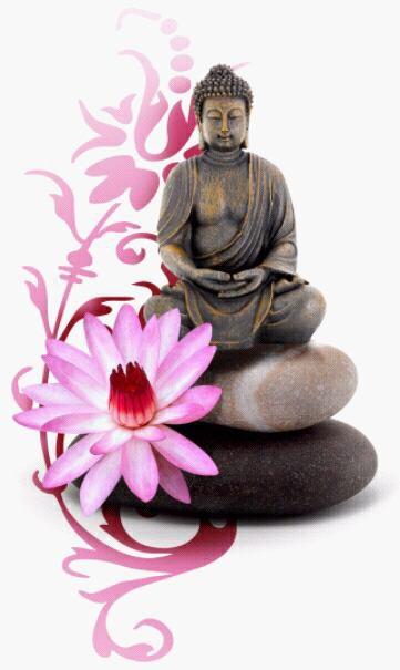 la pleine conscience est l'art de cultiver la paix et le bonheur par l'eveil,la comprehension et l'amour.