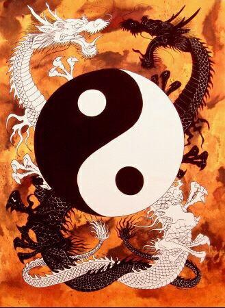les arts martiaux obéissant à la loi du yin yang.