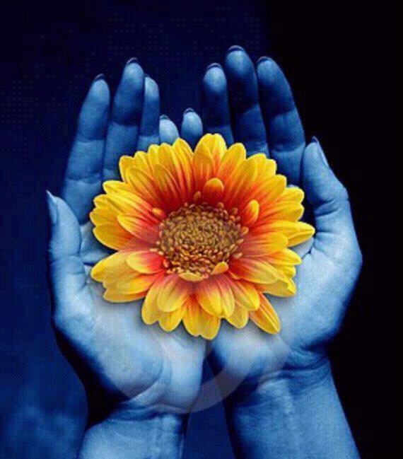 la vie est une aventure quotidienne,une découverte de chaque instant.chacun est lié à sa propre conscience spirituelle.