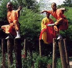 Demonstration of Shaolin Kung Fu 1