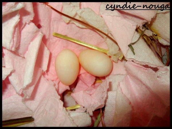 nichée padda opale