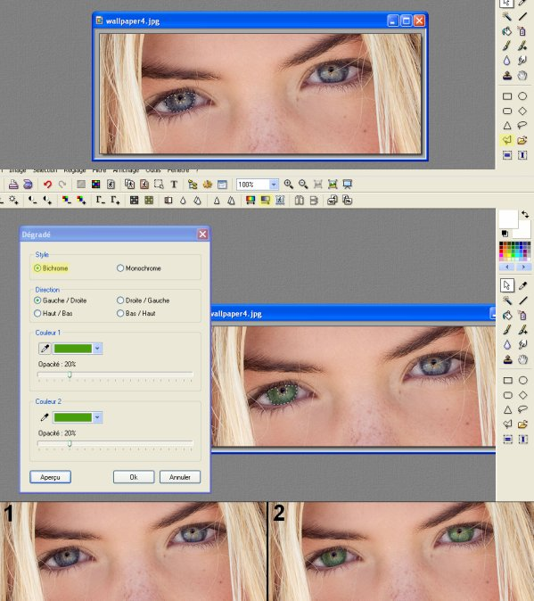 Mettre en pratique: Changer la couleur des yeux (Dégradé)