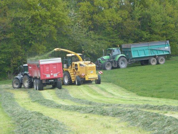 ensilage d'herbe limite sarthe