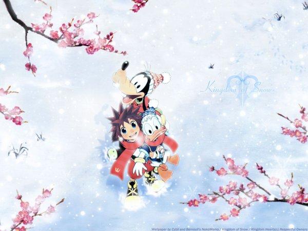 Bonne Année 2012 ! Et Joyeux Anniversaire à Kingdom Hearts !