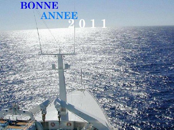 BONNE ANNEE 2011 à TOUS  - HAPPY NEW YEAR 2011