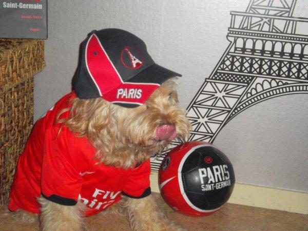 Bouboule fan du PSG <3 !