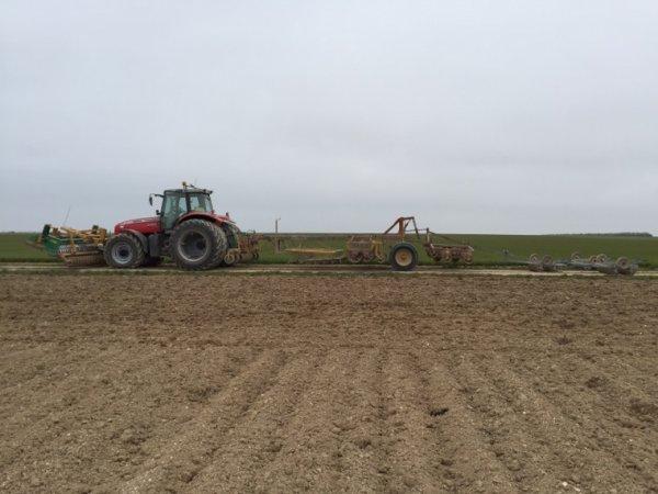 Préparation des terres a betteraves avec le massey Ferguson 6499 et l'auto porteur sopema