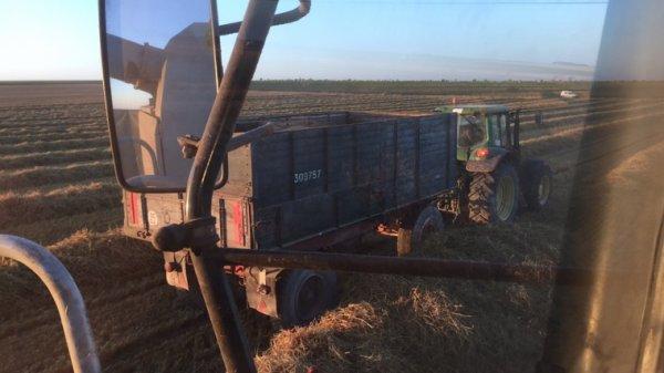 Semence de blé àvec la remorque chariot américaine