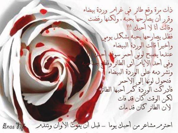 na7no la na5taro fi l3aychi man narta7o ma3ahom,,,,bal na5taro man la nastati3o l3aycha men dounihom.